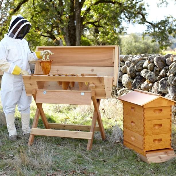top-bar-beehive2