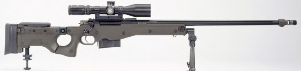 accuracy-international-l115a3-1