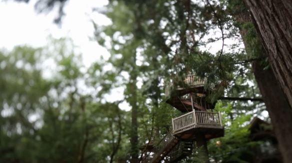 Treehouses3